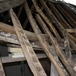 roof_02300_IMG_0612