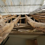 roof_11700_IMG_0666