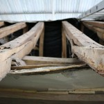 roof_11730_IMG_0592