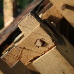 roof_21800_IMG_0722